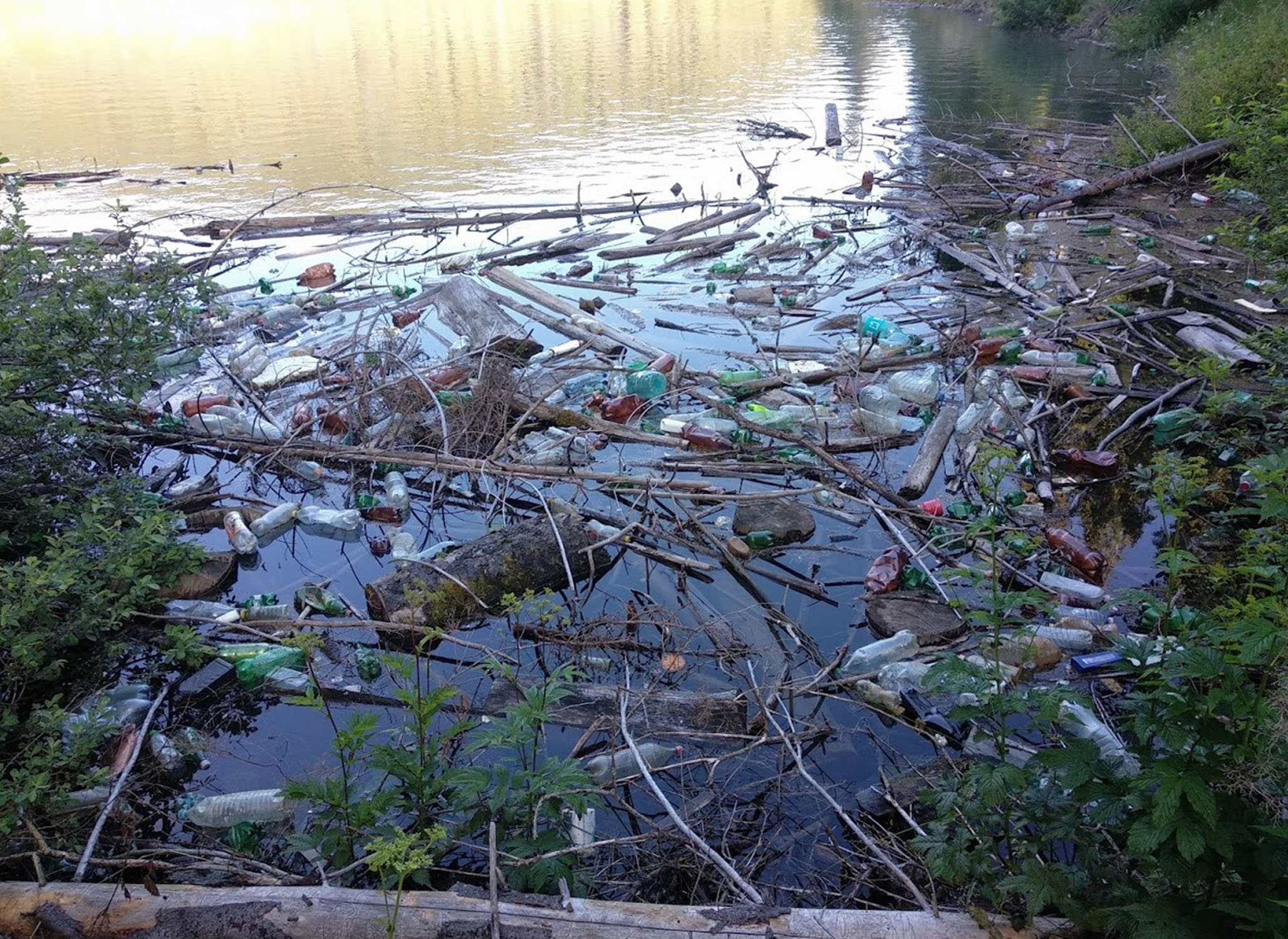 Down by the river - all trash